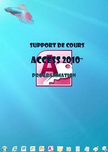 licence du cours Access 2010 programmation