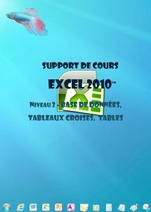 support de cours Excel 2010,tableaux croises,Si,conditionnel..