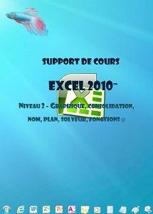 licence du cours excel 2010 gestion graphiques