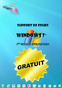 cours windows7