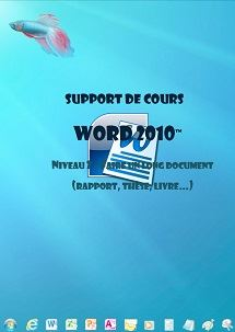 licence du cours word 2010 longs documents