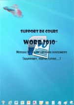 manuel de formation Word 2010, Le long document, les objets