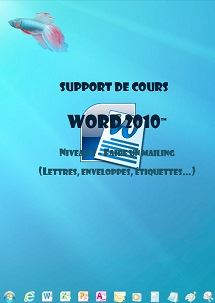 licence du cours word 2010 mailing